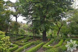 İstanbul'un botanik parkları